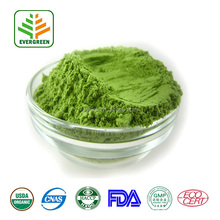 EVERGREEN Purity Quality Wheat grass powder juice 100% Natural Wheat Grass powder juice