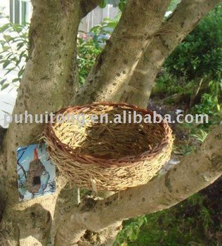 weaving bird nest