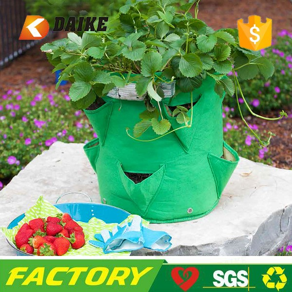 Custom felt strawberry grow bag for Professional Factory