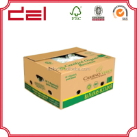 custom print corrugated carton box