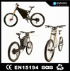 2015 new product fat tire ebike 3000w
