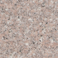 Shrimp pink granite for granite table and floor with low price
