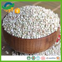 common 2016 new crop raw buckwheat kernel in china