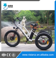 24 inch * 4.0 fat tire big wheel electric assist cargo trike with RSD-706 alloy frame for sale