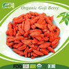 Wholesale Superfood Organic Certificated Goji