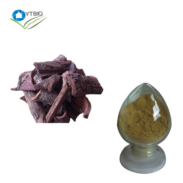 100% Natural high quality Phytosterols 2.5% pygeum africanum extract