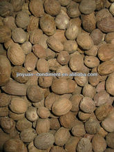 Nutmeg Seed Without Shell Exporters