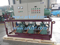 hot saled refrigeration unit with bizter compressor used in cold storage room