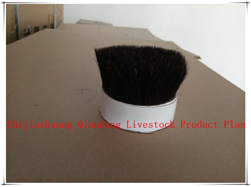 60% Tops 64mm Black Bristle Pig Hair