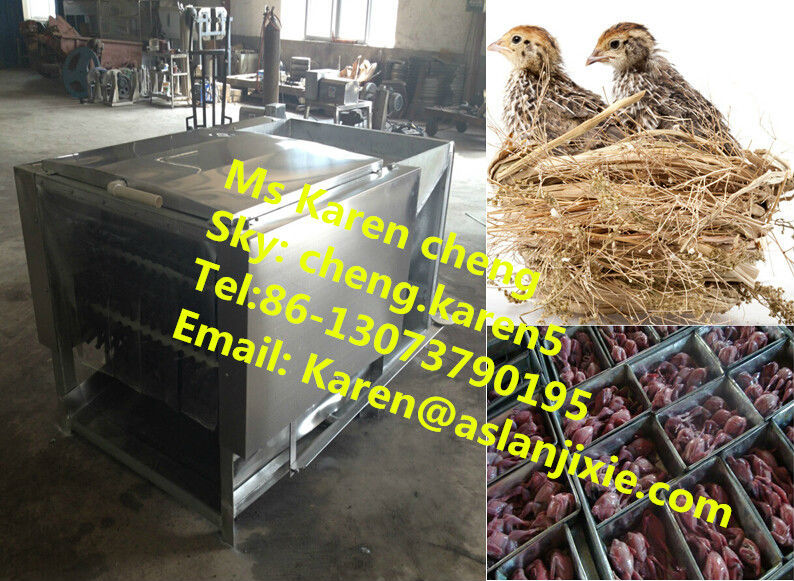 Chicken slaughtering machine/quail slaughtering machine