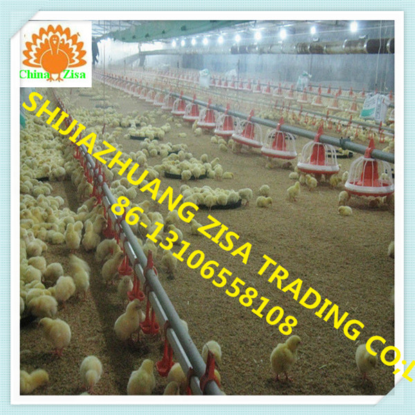 chicken Free range farm equipment