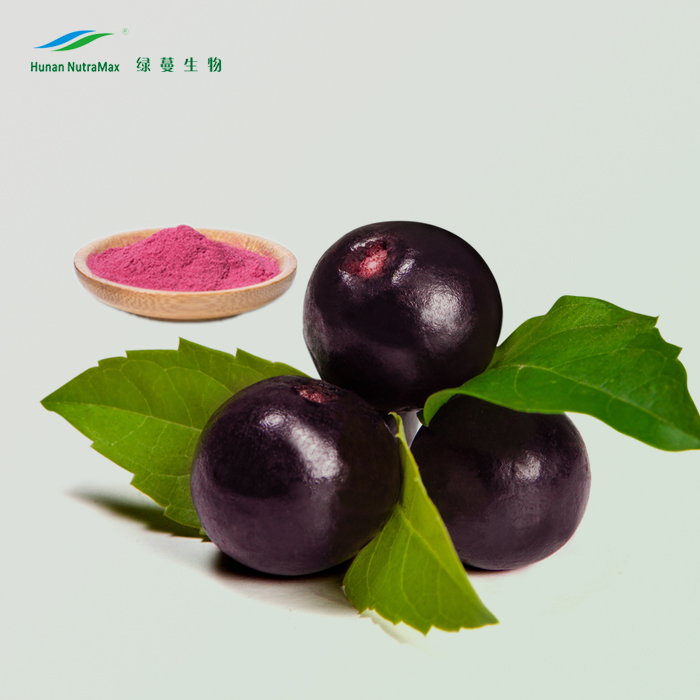 Halal&Kosher Acai Juice Concentrate/Acai Berry Fruit Extract/Acai Berry P.E.