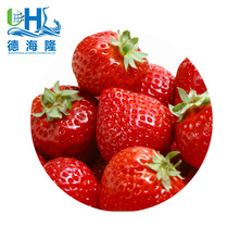 2018 Frozen IQF strawberry and blueberry for wholesaler