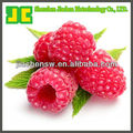 synthetic raspberry ketone 99% CAS No.: 5471-51-2
