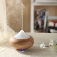 2014 hot sales grapeseed oil - aroma diffuser GX