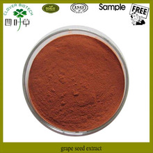 Hot selling extract powder from dried grape seed
