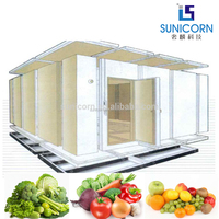 2017 new trend product cold storage for fruit and vegetable keeping used as chiller room