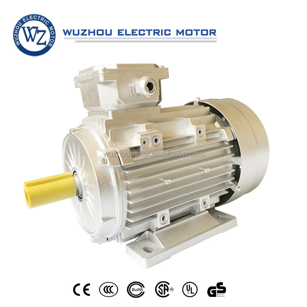 YE2-B3 series casting aluminum electric motor for fan