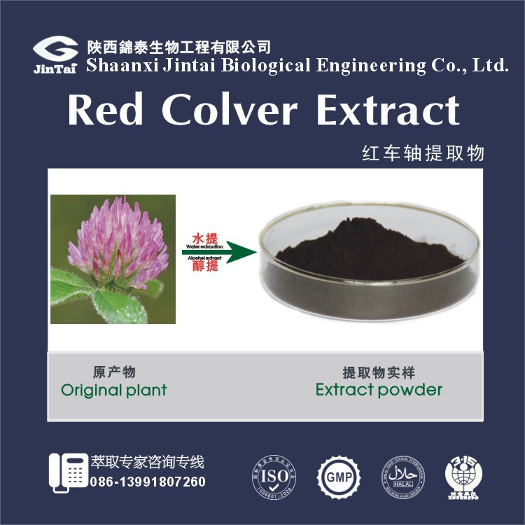 100% Pure Red Clover Extract 40% Isoflavone for Women Health Care
