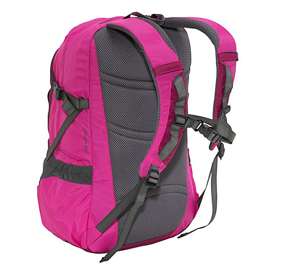 Latest Deasign Factory Price Waterproof Sports Backpack Day Pack with Laptop Compartment and Organizer