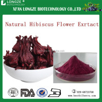 Hibiscus extract/hibiscus concentrate powder/hibiscus flower powder in health care standard