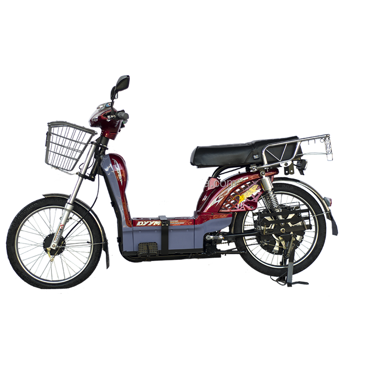 22inch tire electric bicycle for india market