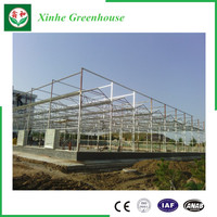 Agricultural Green House Aluminum Garden Greenhouse