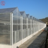 China factory direct polycarbonate garden greenhouse