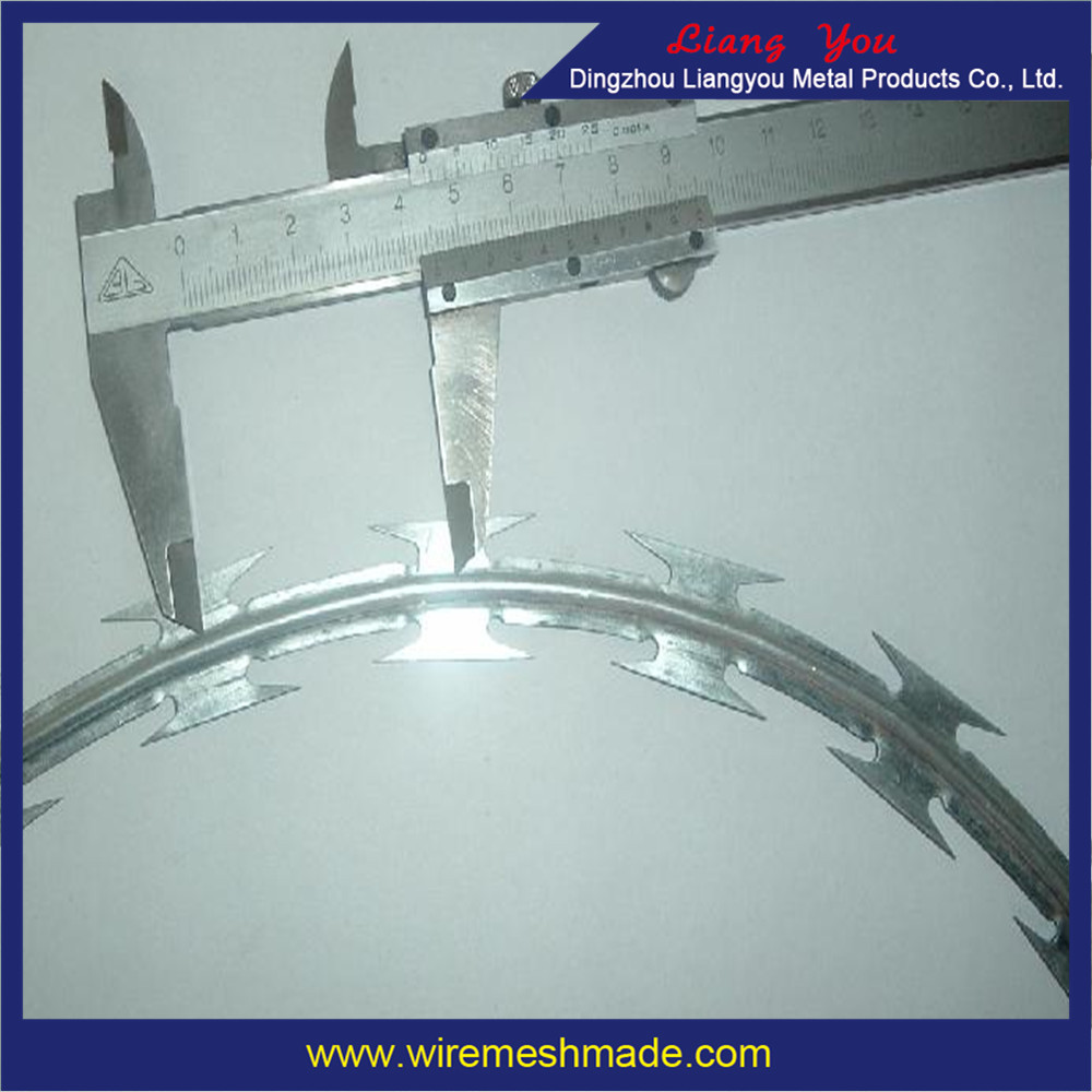 2016 lowest price hot dipped razor galvanized barbed wire