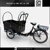 dutch bicycle Brand new BRI-C01 electric tricycle for 2 person with rain cover