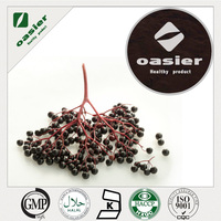 food grade Elderberry extract powder for bulk supply