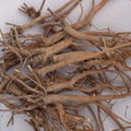 Profession supply natural Radix Bupleuri root