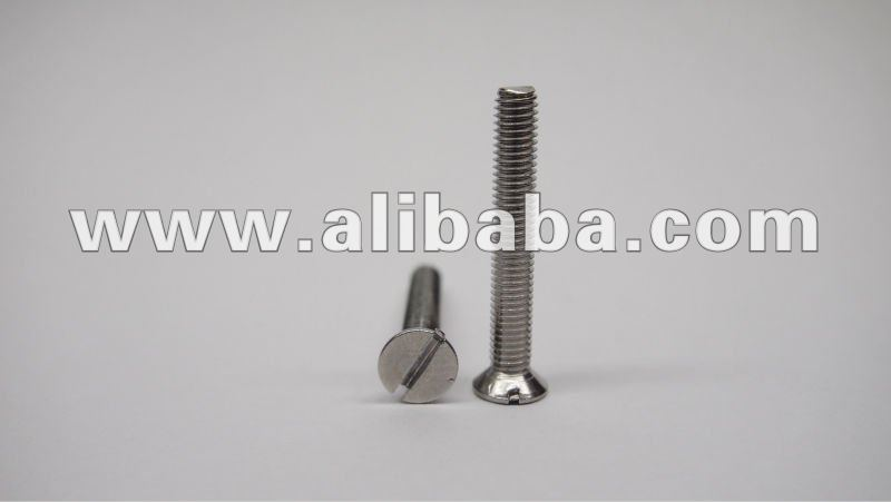 Stainless Steel Slotted Countersunk Head