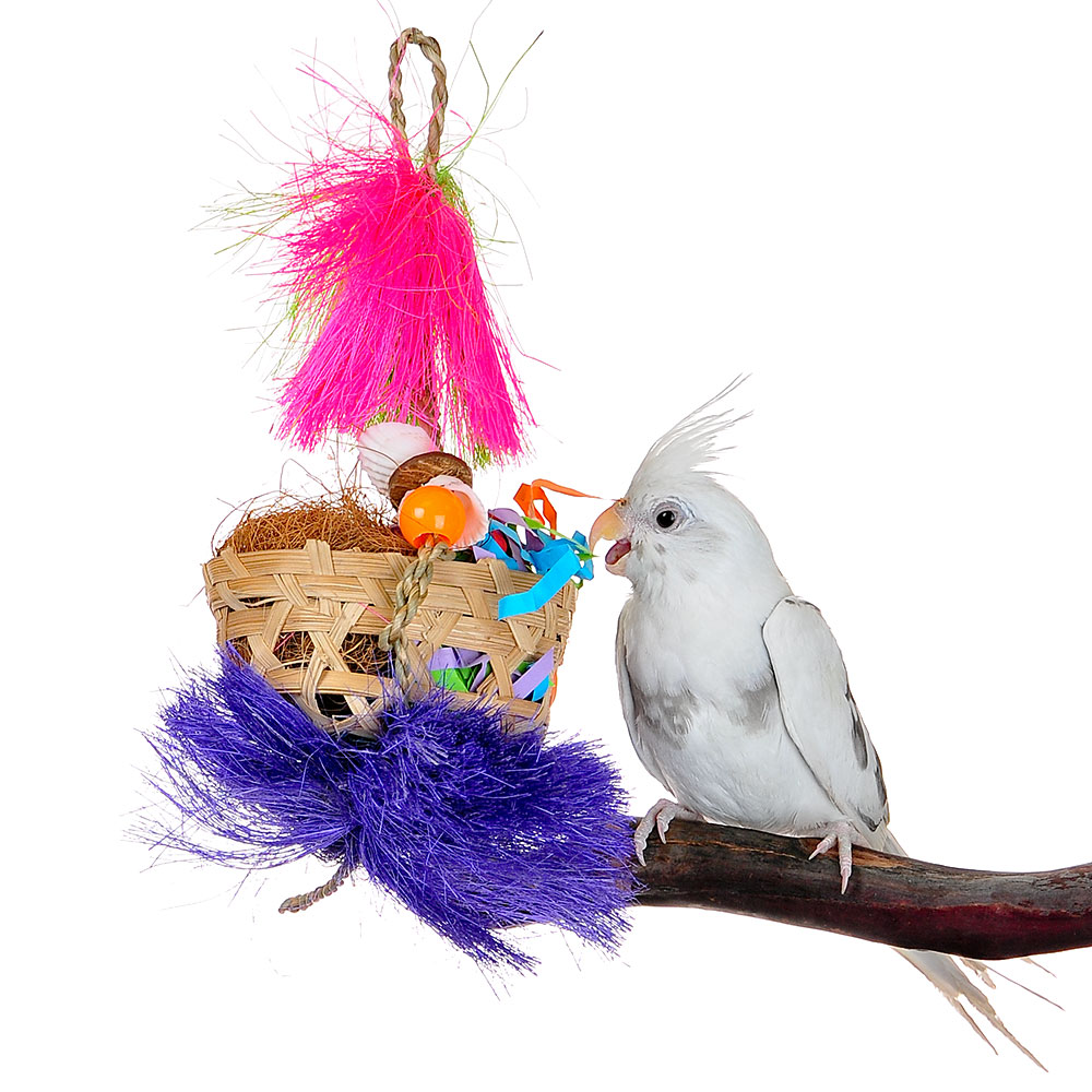 New style hot selling bird toy