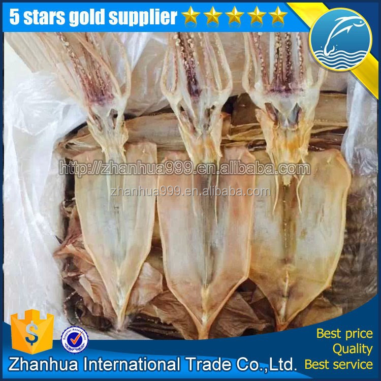 export dried illex squid