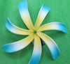 Regional feature foam artificial Plumeria tahitian foam flowers
