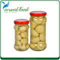 health canned mushroom import from china