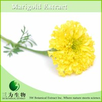 100% Pure Marigold Extract 10% Lutein Made in China