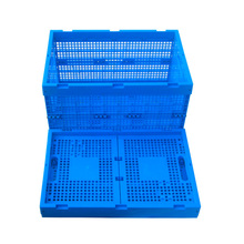 100%New PP Plastic Crate for Seafood, Fish Crate, Vegetable Crate