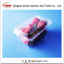 Hot Sale Blister Packaging Disposable Fresh Strawberry Container
