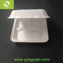 Take Away Bagasse Biodegradable Paper Food Containers