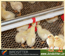 Full automatic water cups niple for different chicken