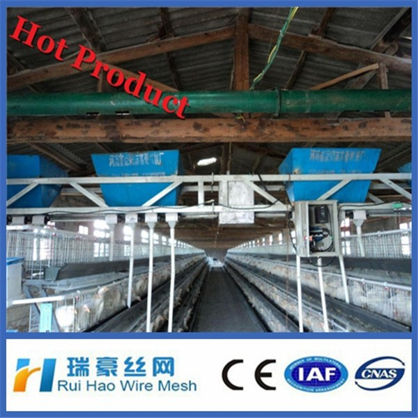Anping factory supply used chicken cages for sale
