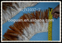 "5-6"" Bulk Coque Hackle saddle Feather"