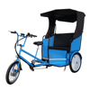 Scenic Spots Three Wheel 500W 2 Seater Electric Battery Rickshaw Electric Pedicab Tricycle