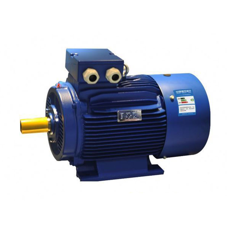 IEC Standard UL Certified Small Three Phase Electric Motor