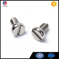 Fastener Manufacturer Stainless Steel Slotted Cylinder Head Screw