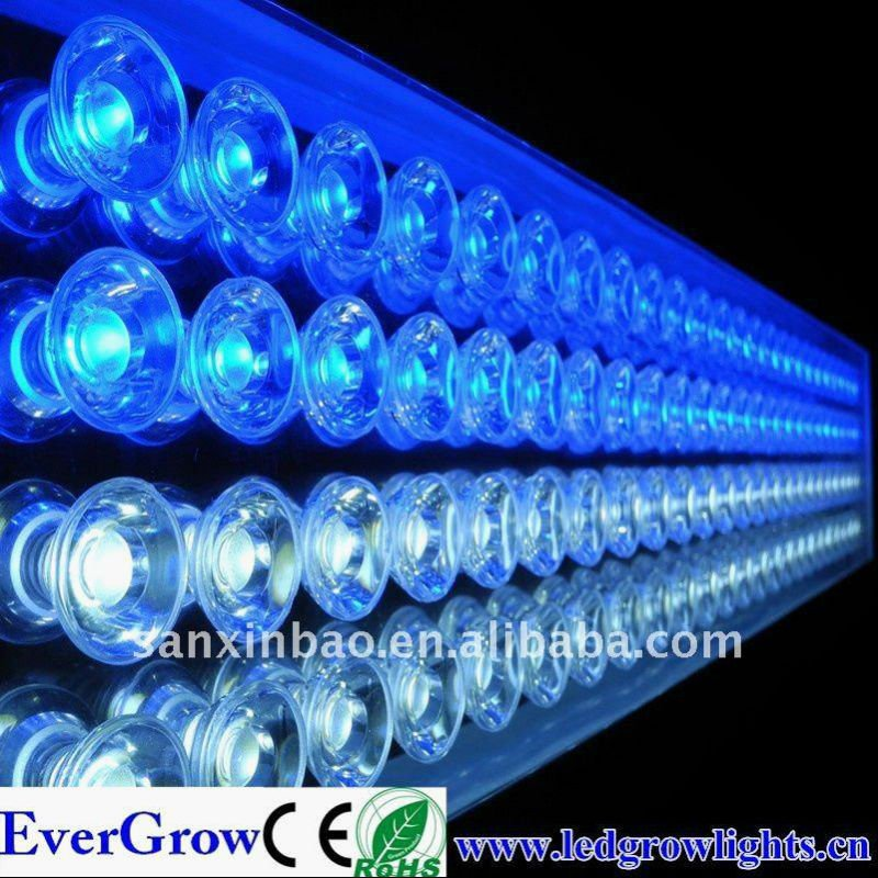 100w fish bowl Led Light for Aquarium