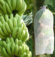 Eco-friendly Nonwoven Banana Bunch Bag for fruit Protection