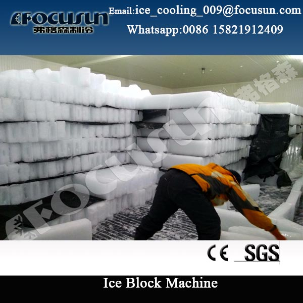 For Congo 25 tons ice block making machine price